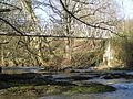 River Severn,Cancoed footbridge. - geograph.org.uk - 836259.jpg