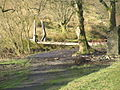 River Severn,Wooden footbridge,Rhyd-yr-Onnen - geograph.org.uk - 814670.jpg