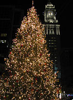 Christmas tree near Boston's Quincy Market.