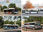 Metropolitan Transportation Authority Regional Bus Operations services sampler.jpg