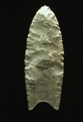 """""""A Clovis  blade with medium to large lanceolate spear-knife points. Side is parallel to convex and exhibit careful pressure flaking along the blade edge. The broadest area is near the midsection or toward the base. The Base is distinctly concave with a characteristic flute or channel flake removed from one or, more commonly, both surfaces of the blade.  The lower edges of the blade and base is ground to dull edges for hafting. Clovis points also tend to be thicker than the typically thin latter stage  Folsom points. Length: 4–20 cm/1.5–8 in. Width: 2.5–5 cm/1–2"""