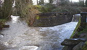 Two stream channels join below land covered with trees and shrubs and protected by a stone wall. The wall, about six feet (two meters) high, extends across the right-hand stream channel, which plunges over the wall. Downstream, the combined channels are about 30 feet (9 meters) wide and turbulent.