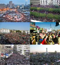 Info box collage for mena Arabic protests.png