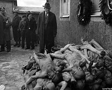 Several men in suits and uniforms at a concentration camp approaching a pile of emaciated corpses