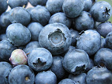 Group of approximately 20 blue berries
