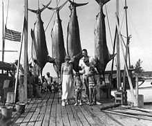 a man, a woman, and three boys standing on a pier with four large fish suspended from hooks above their heads