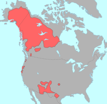 """""""Map of North America showing in red the pre-contact distribution of Na-Dene languages"""""""