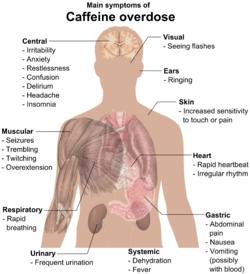 Torso of a young man with overlayed text of main side-effects of caffeine overdose.