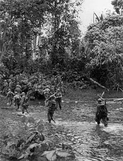 Troops of the 32nd Infantry Division near Saidor