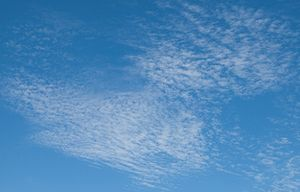 Cirrocumulus clouds on a summer afternoon