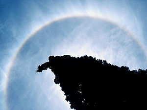 Cirrostratus nebulosus clouds being illuminated by the sun and forming a halo