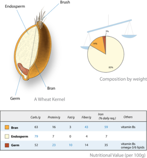 Wheat-kernel nutrition.png