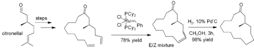 Ring-closing metathesis used in synthesis of muscone