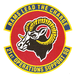 21st Operations Support Squadron.PNG