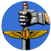 25th Air Support Operations Squadron.PNG