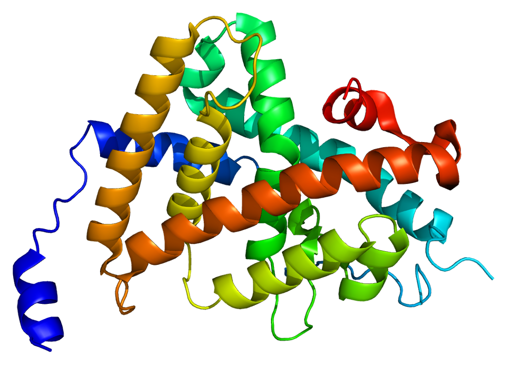 Thyroid Hormone Receptor Alpha
