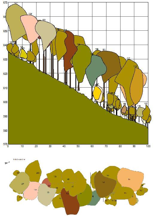 Cartography of canopy structure is important for studies of relations between tree species .  sc 1 st  Academic Dictionaries and Encyclopedias & Canopy (biology)